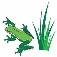 turpin-landscaping-frog