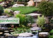 ponds-and-watergardening
