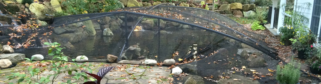 Fall Pond Maintenance and Pond Netting