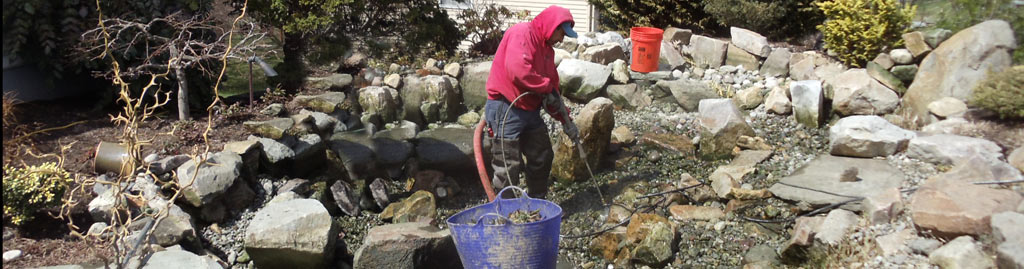 Pond maintenance turpin landscaping for Pond service
