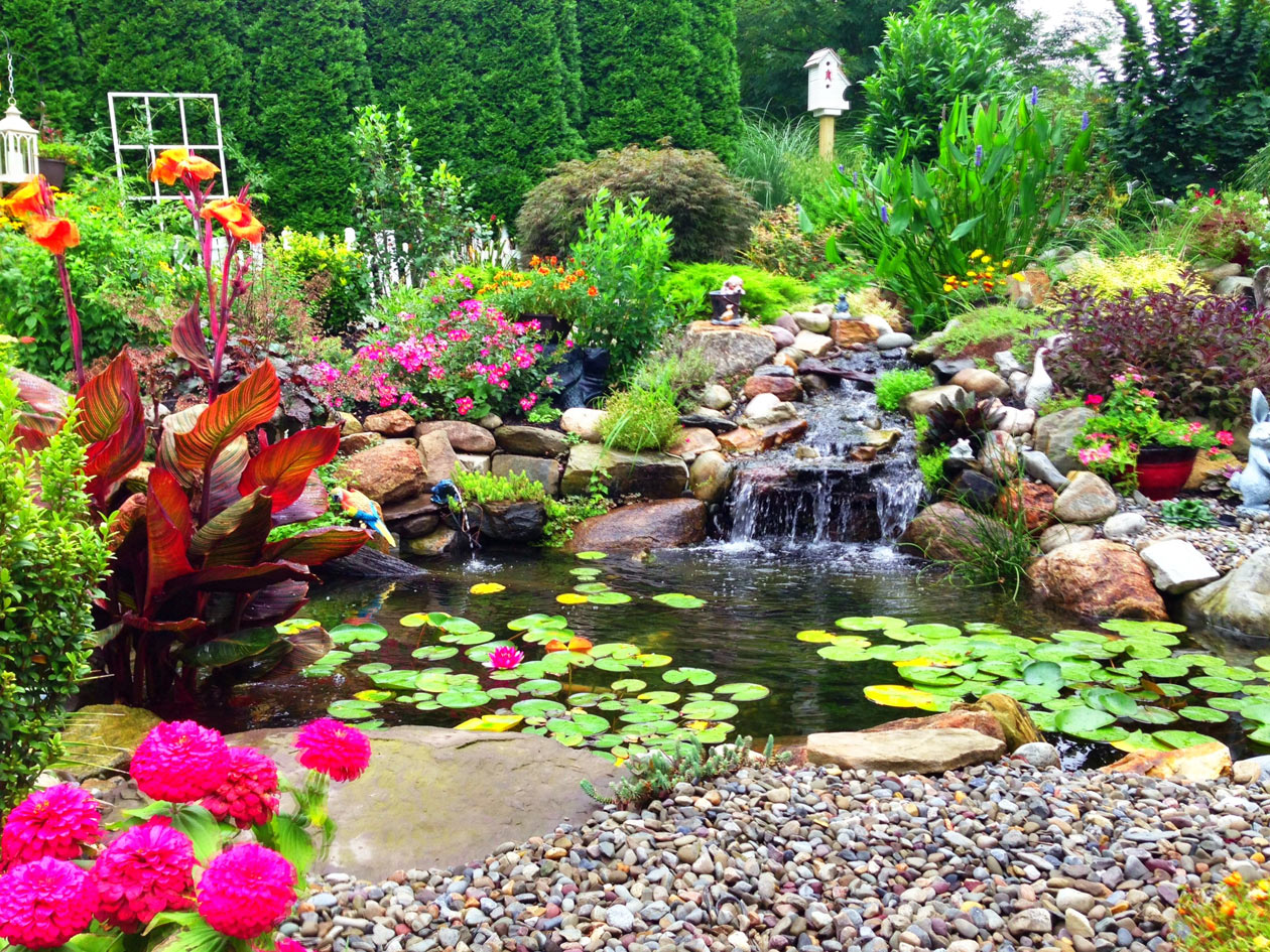 Ponds & Water Garden Pictures