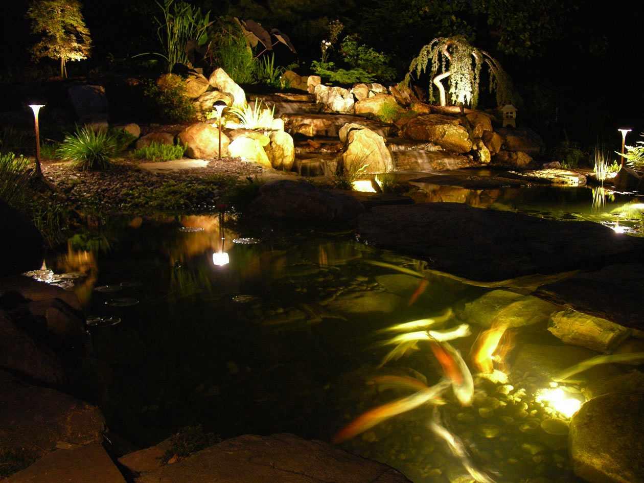 Pond lighting turpin landscaping for Pond lights