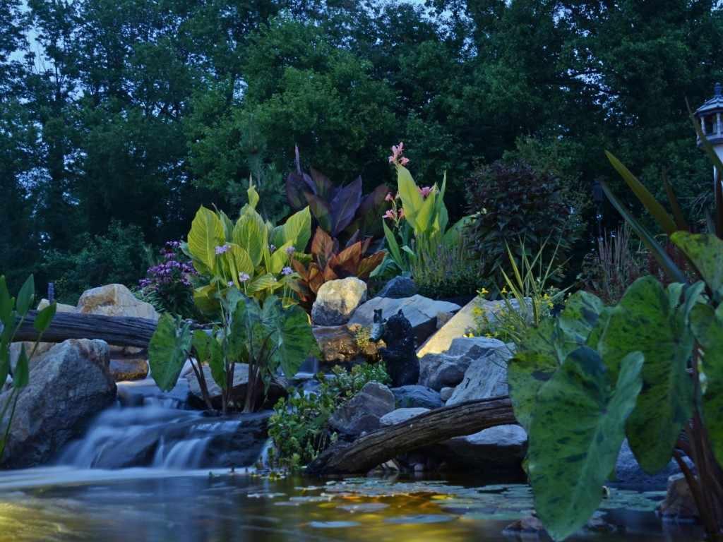 Evening Water Garden Tour