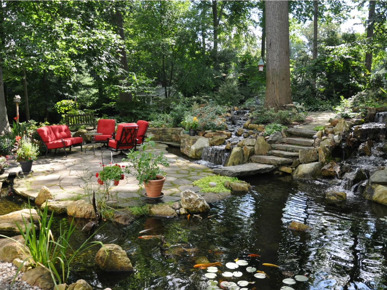 Brandywine valley water garden tour barbecue success for Backyard water garden