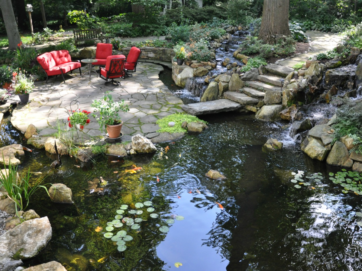 What size koi pond should i design for my yard turpin for Koi pond size