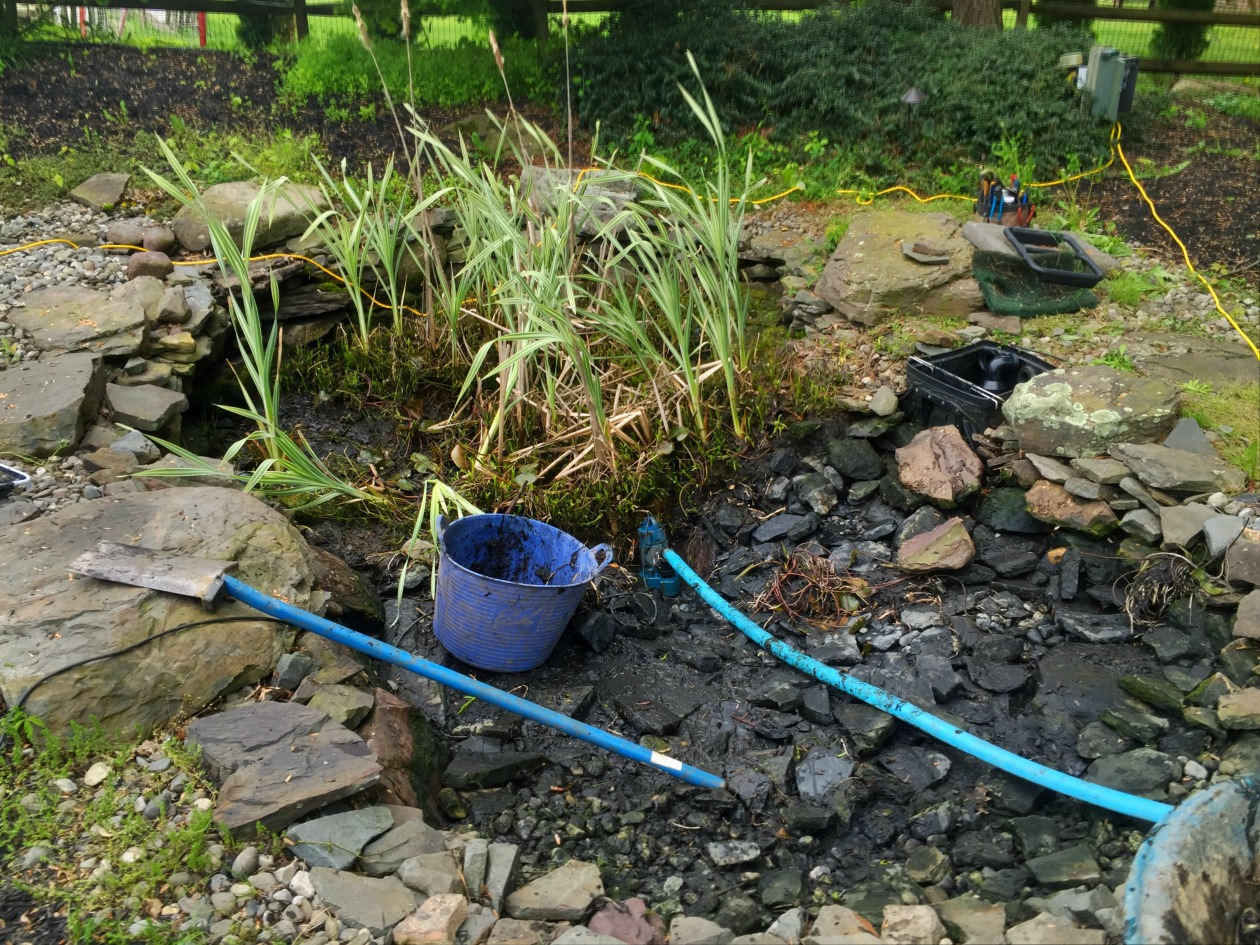 How much does it cost to clean out a koi pond turpin for Koi pond installation cost