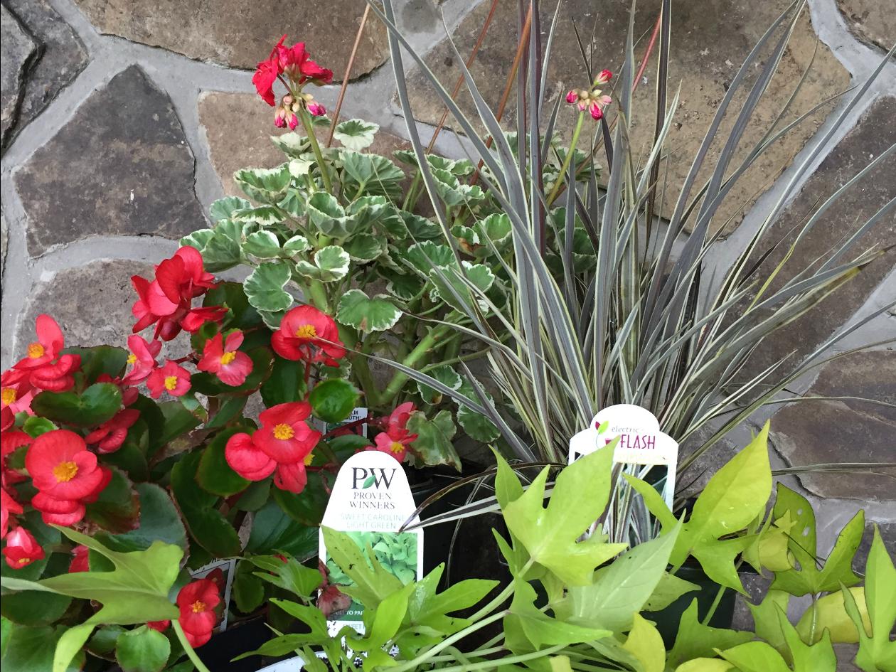 ... Creative Outdoor Planter Ideas