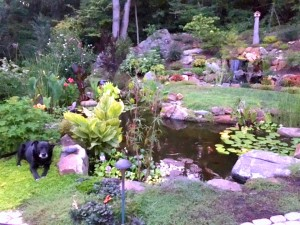 pond downingtown pa