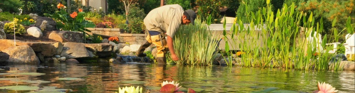 Pond Cleaning in Philadelphia and Surrounding Areas
