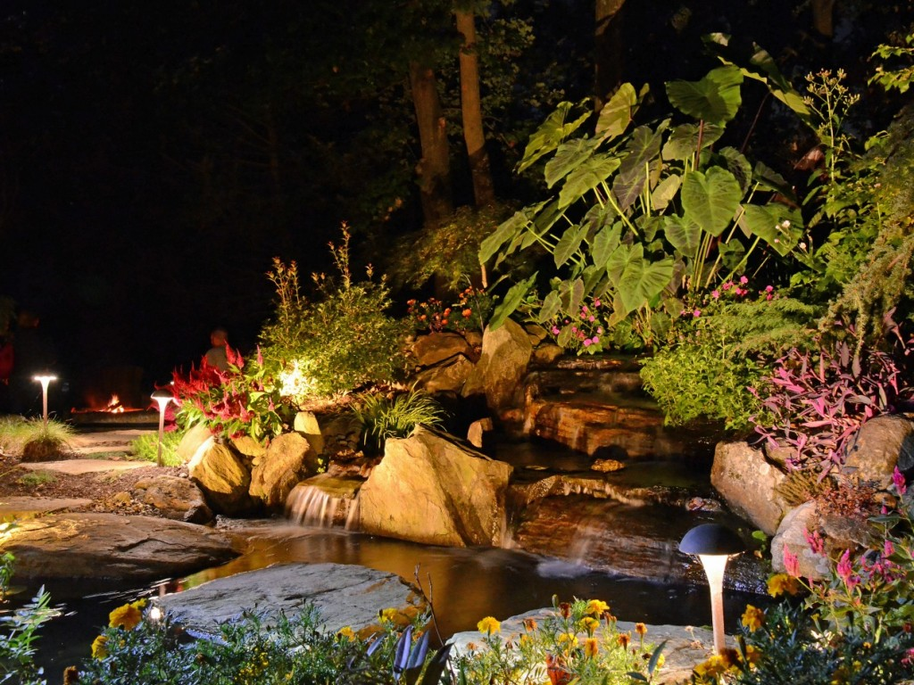 Are underwater pond lights harmful to fish turpin for Garden pond lights