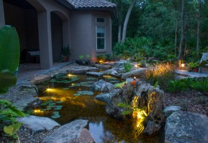 Underwater Pond Lights