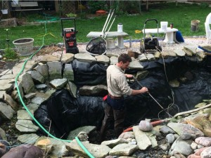 Fall Pond Maintenance Tips